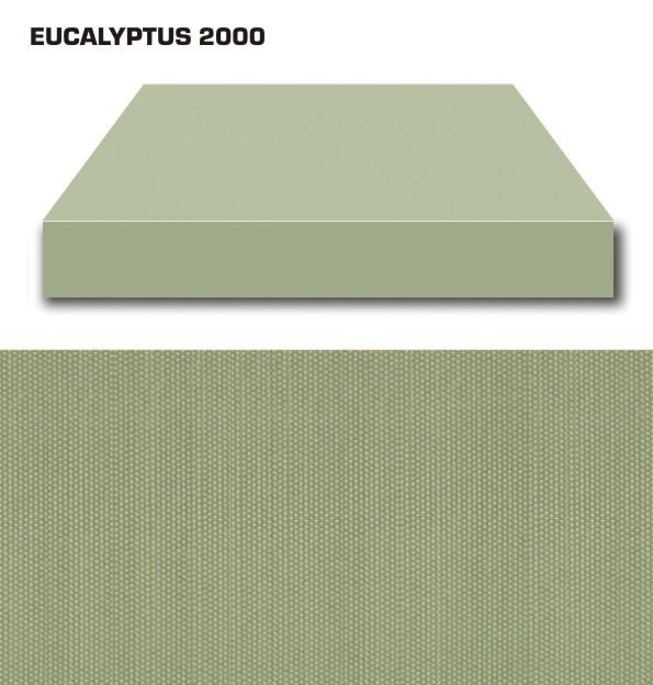 EUCALYPTUS 2000
